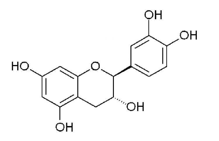 uso-bacterias-lacticas-conservar-flavanoles-producto-alimenticio.3