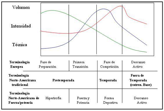 periodizacion-inversa-en-el-entrenamiento-deportivo-02